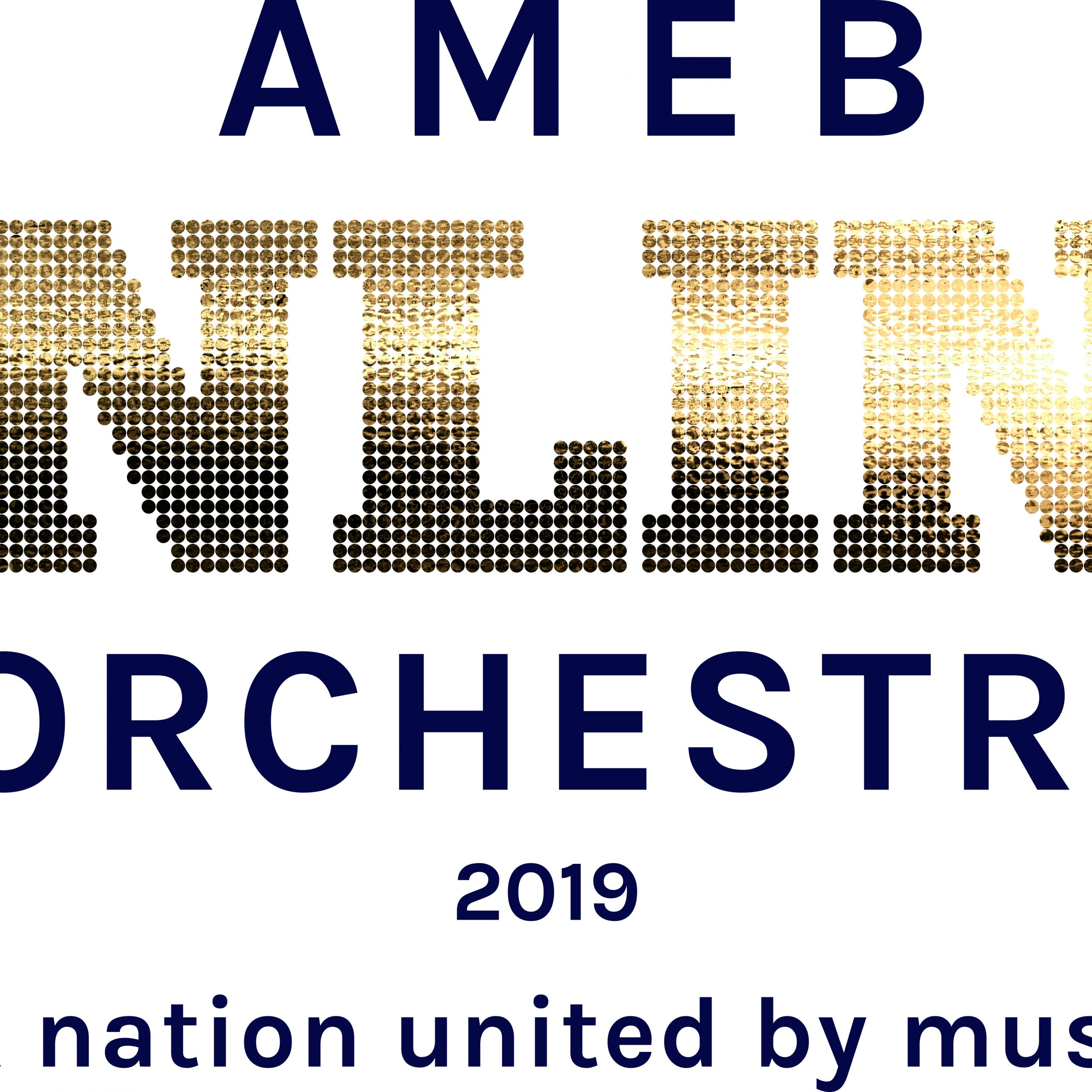Your step-by-step guide to entering the AMEB Online Orchestra 2019